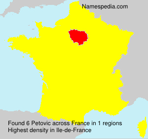 Surname Petovic in France