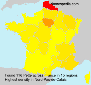Surname Pette in France