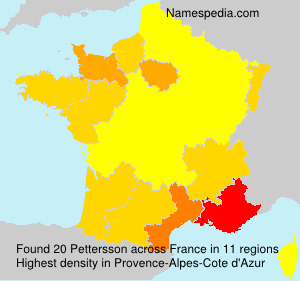 Surname Pettersson in France
