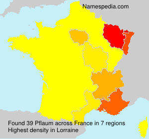 Surname Pflaum in France