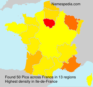 Surname Pica in France
