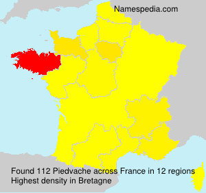 Surname Piedvache in France