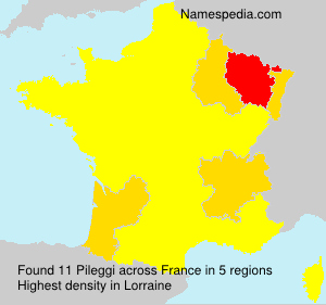 Surname Pileggi in France