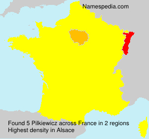 Surname Pilkiewicz in France