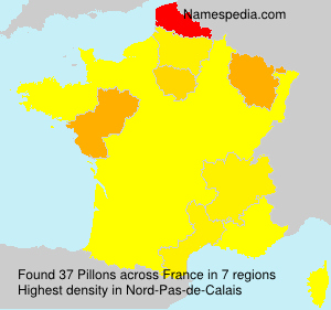 Surname Pillons in France