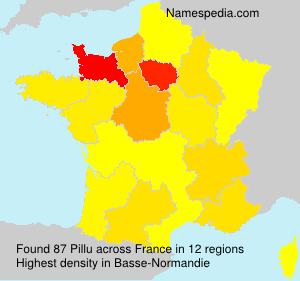 Surname Pillu in France