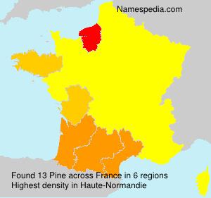 Surname Pine in France