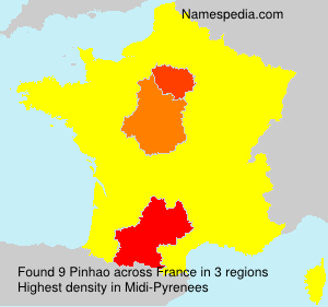 Surname Pinhao in France