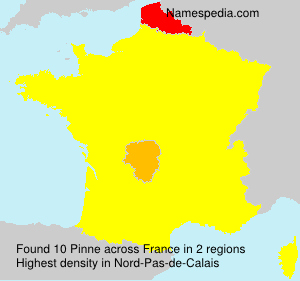 Surname Pinne in France