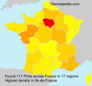 Surname Pinta in France