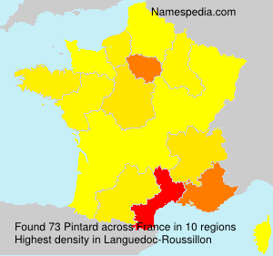 Surname Pintard in France
