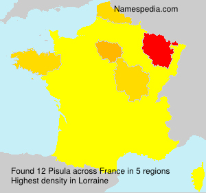 Surname Pisula in France