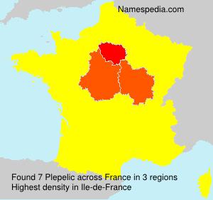 Surname Plepelic in France