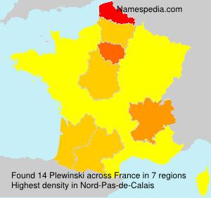 Familiennamen Plewinski - France
