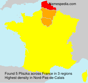 Pliszka - France