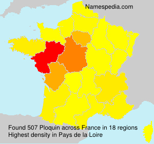 Surname Ploquin in France