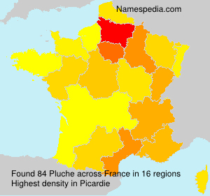 Surname Pluche in France