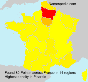 Surname Pointin in France