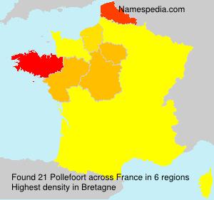 Surname Pollefoort in France