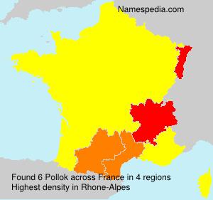 Surname Pollok in France