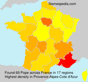 Surname Pope in France