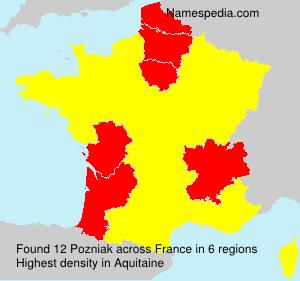 Surname Pozniak in France