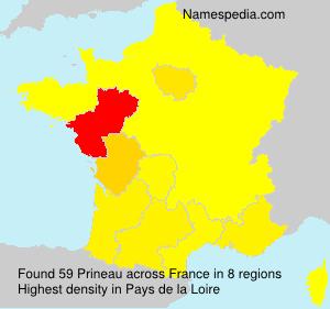 Familiennamen Prineau - France