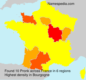 Surname Pronk in France
