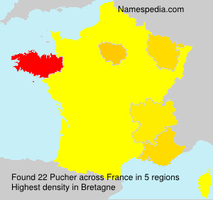 Surname Pucher in France