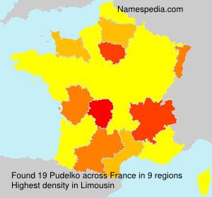 Familiennamen Pudelko - France