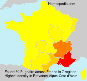 Surname Pugnaire in France