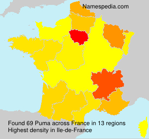 Surname Puma in France