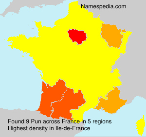 Surname Pun in France
