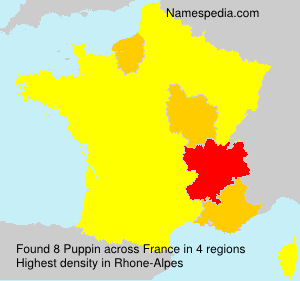 Surname Puppin in France