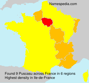Surname Puscasu in France