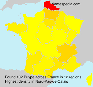 Puype - France