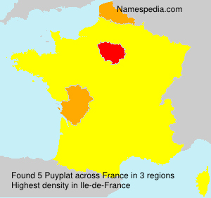 Surname Puyplat in France