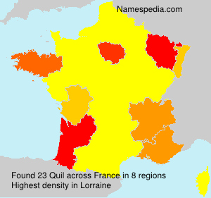 Surname Quil in France