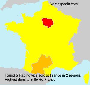 Surname Rabinowicz in France