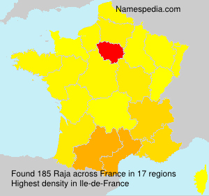 Surname Raja in France