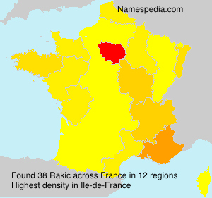 Surname Rakic in France
