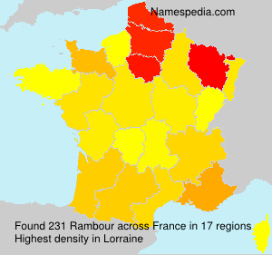 Surname Rambour in France