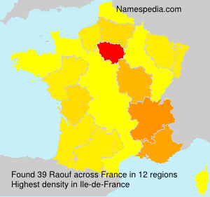 Surname Raouf in France