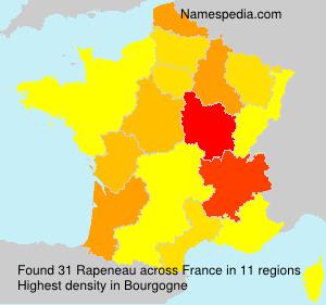 Surname Rapeneau in France