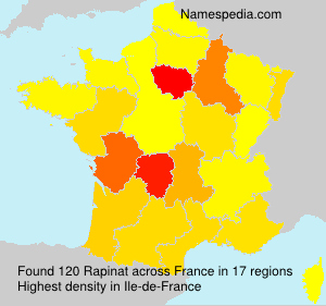 Surname Rapinat in France