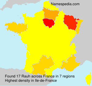 Surname Rauh in France