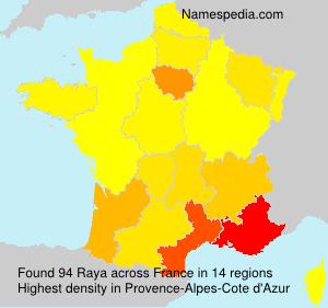 Surname Raya in France