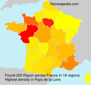 Surname Rayon in France
