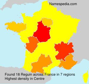 Surname Reguin in France
