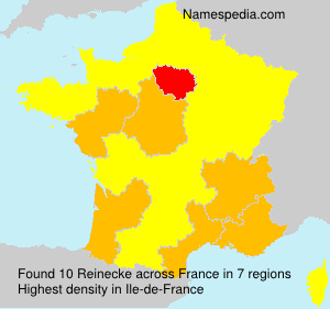 Surname Reinecke in France